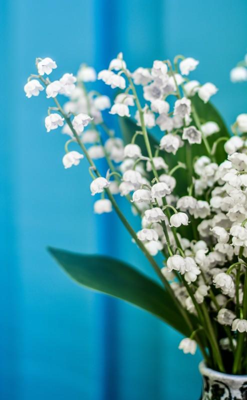 media/image/SKINthings-body-flowers.jpg